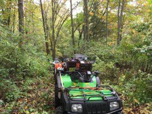 trail-work-day-10