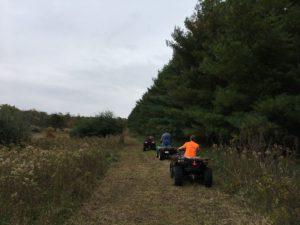 trail-work-day-7